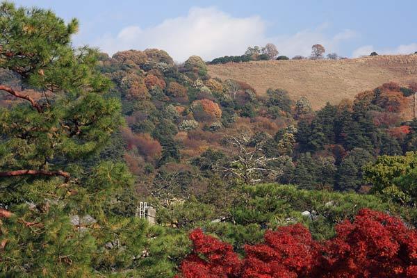 東大寺 名残の秋4