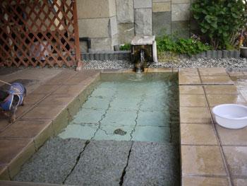ワンコ温泉