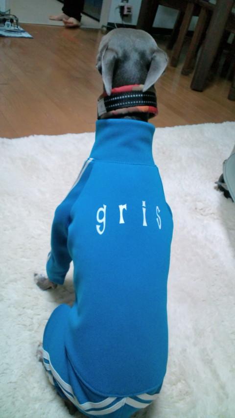 gris-sportwear4.jpg