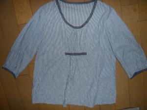 P1030919_convert_20100326225900.jpg