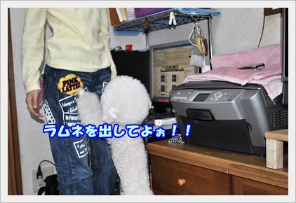 DSC_1512.jpg