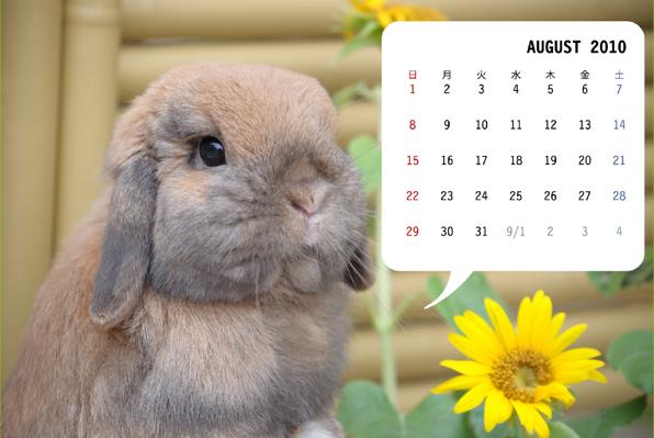 8月カレンダー1