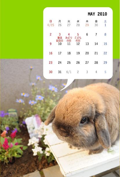 calendar201005.jpg