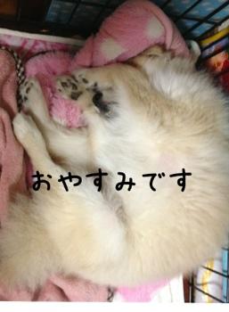 fc2blog_20130319183458ff3.jpg