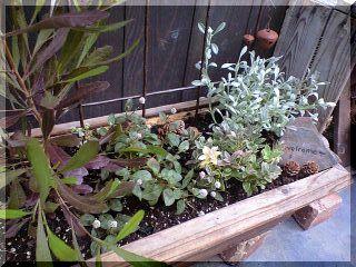お庭のお仕事2-3
