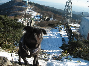 暮れのリベンジに山頂へIMG_1657