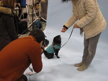 プロの撮影IMG_0041
