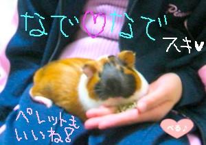 I♥なでなで(byべる)