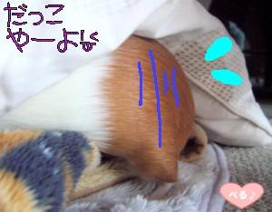 おちりが出てるヨ(^.^)