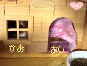 オマケ(⌒◇⌒)