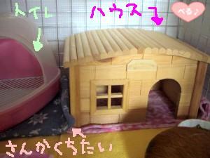 トイレ&別荘