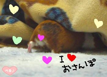 I LOVEおさんぽ