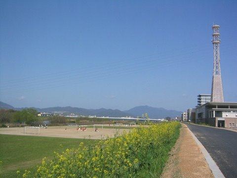 20100322003.jpg