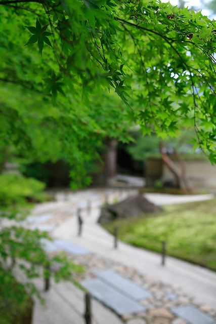 足立美術館 庭園 島根県