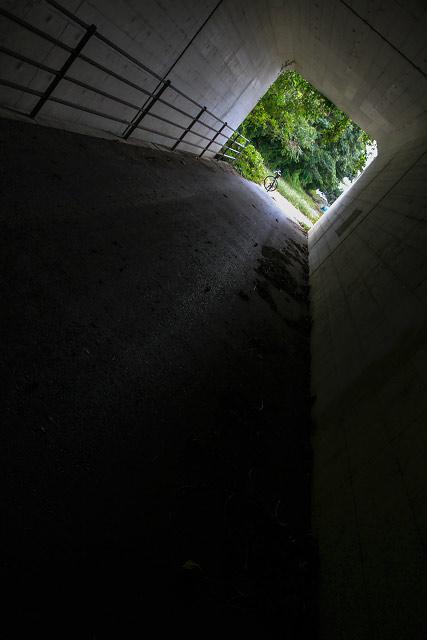 _MG_8118.jpg