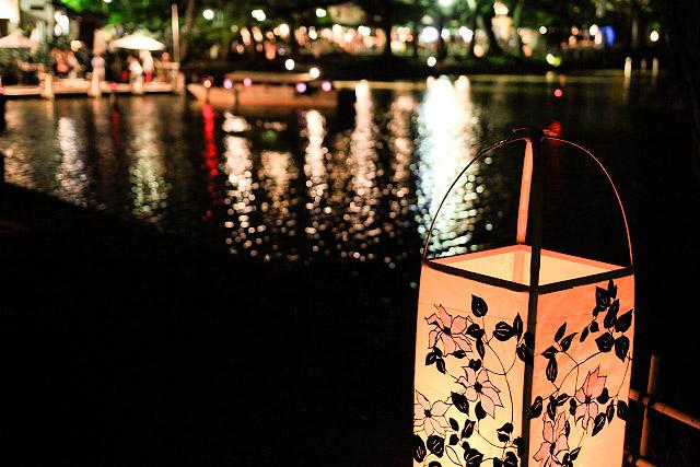松江 水燈路 松江城 ライトアップ