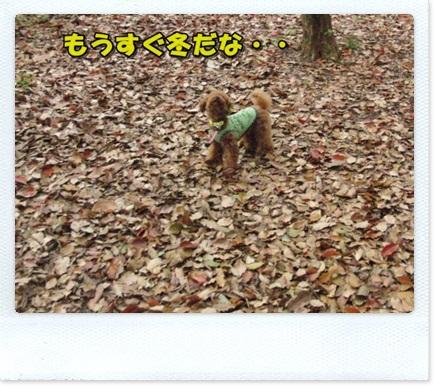 20110425-CIMG5512.jpg