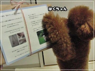 20110515-CIMG1434.jpg