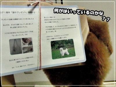 20110515-CIMG1449.jpg