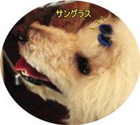 20110703-CIMG1245.jpg