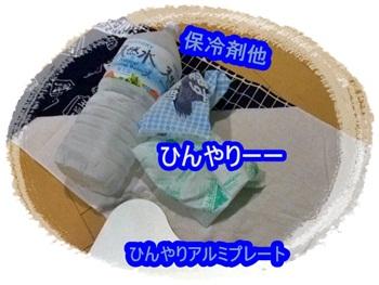 20110708-001.jpg