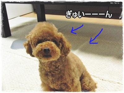 20110708-CIMG4041.jpg