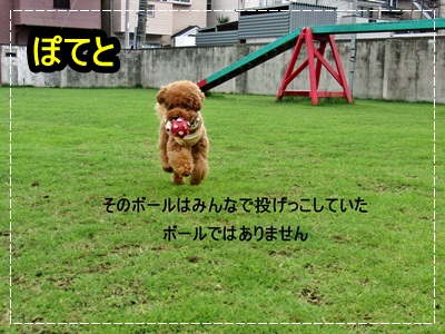 20110731-2109.jpg