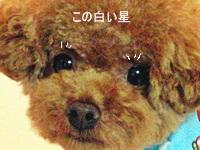 20110823_377.jpg