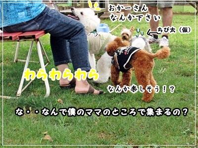 20110919-3282.jpg