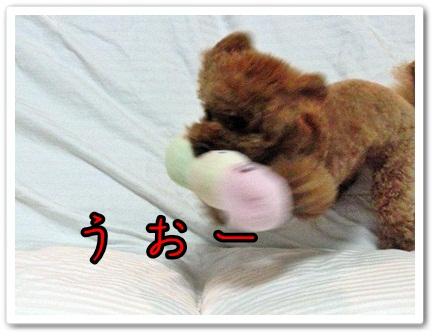 20110927-521.jpg