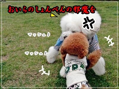 20111022-6513.jpg