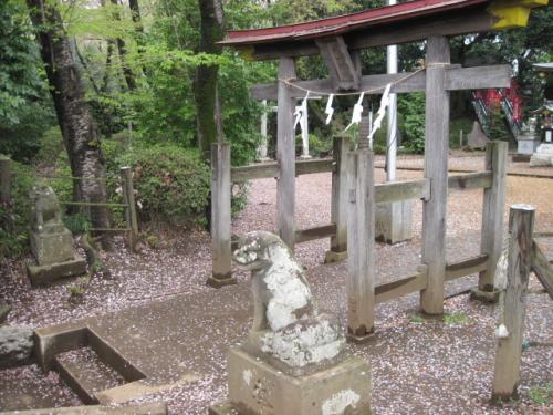 神社の急な石段を登ったところ