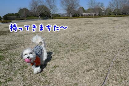 114_2.jpg