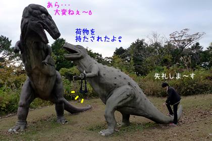 241_5.jpg