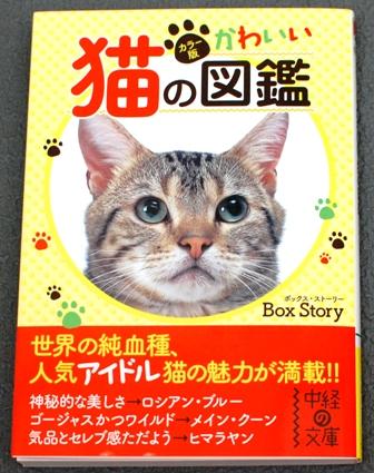 カラー版 かわいい猫の図鑑