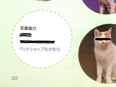 DSC_0007_20101027172713.jpg
