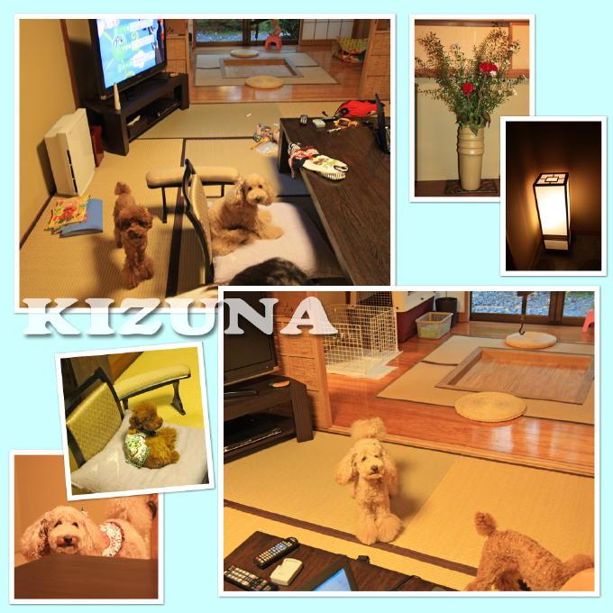 10_20101003173523.jpg