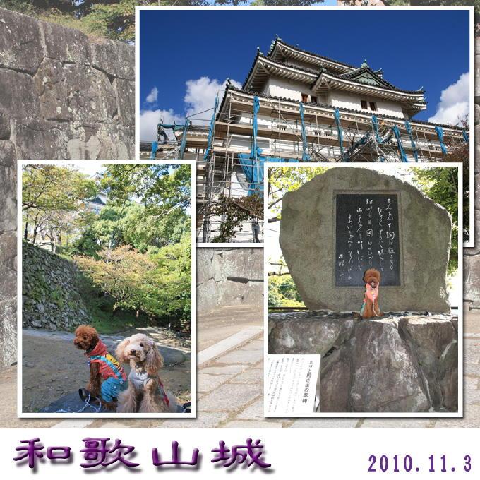 10_20101107183302.jpg
