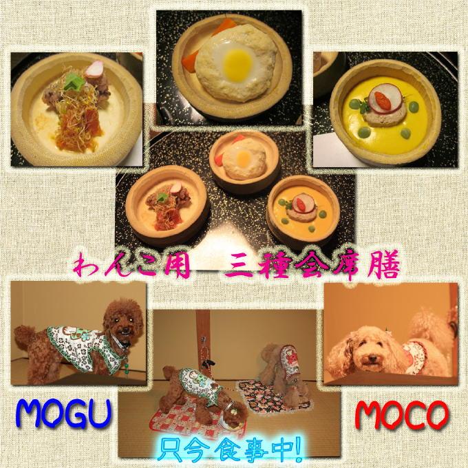 11_20101003173523.jpg