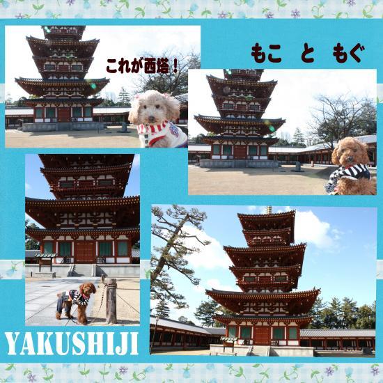 12_convert_20100211221004.jpg