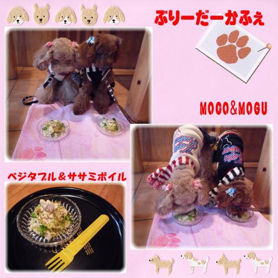 12_convert_20100214195036.jpg