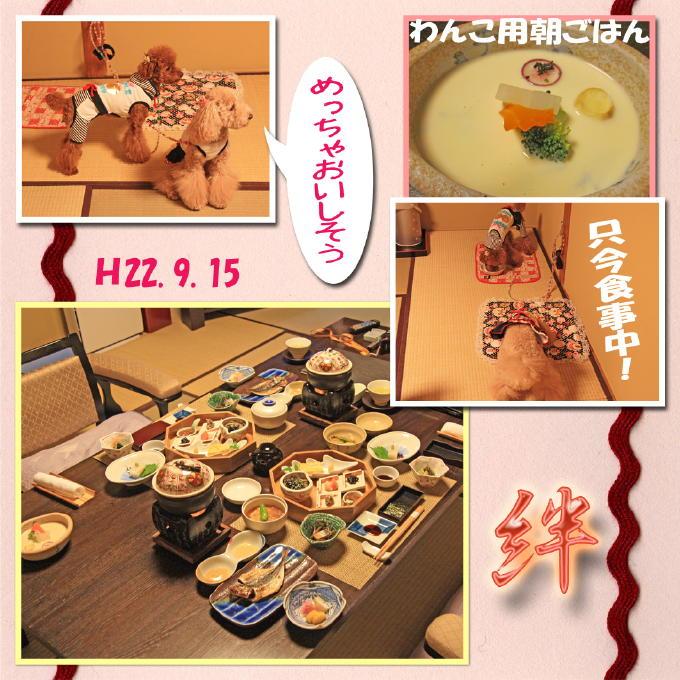 17_20101003231250.jpg