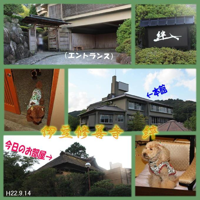 1_20101002224217.jpg