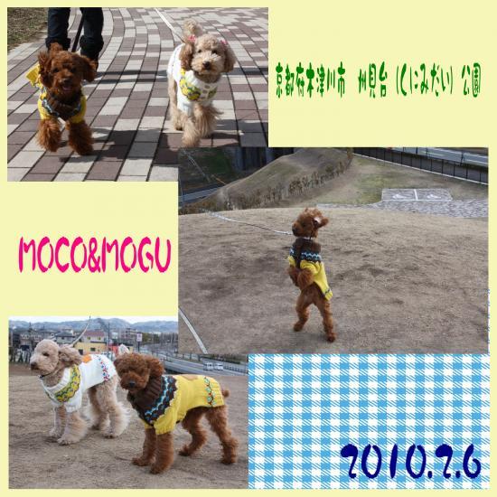 1_convert_20100210213158.jpg