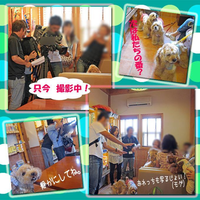 2-1_convert_20100808212701.jpg