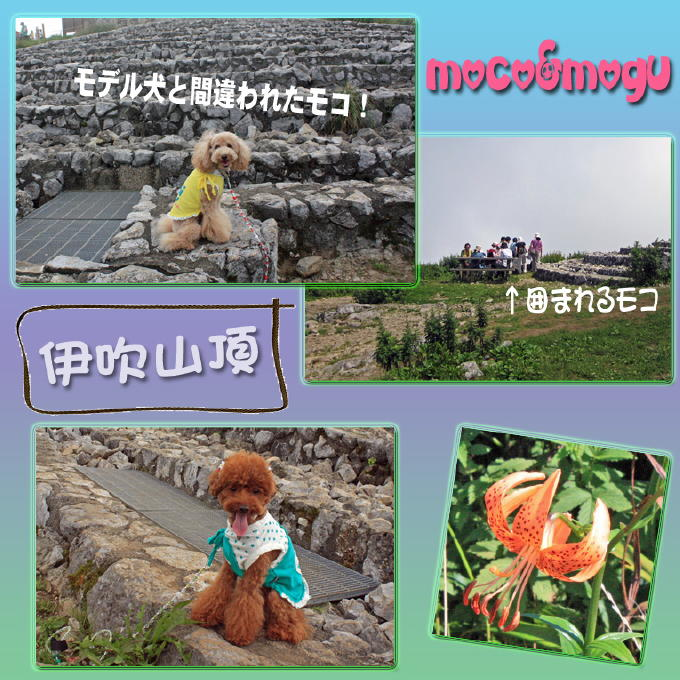 20_20100828225903.jpg