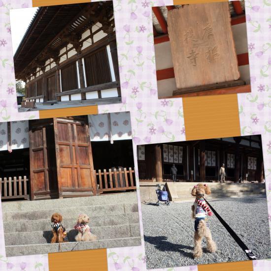 2_convert_20100211152032.jpg