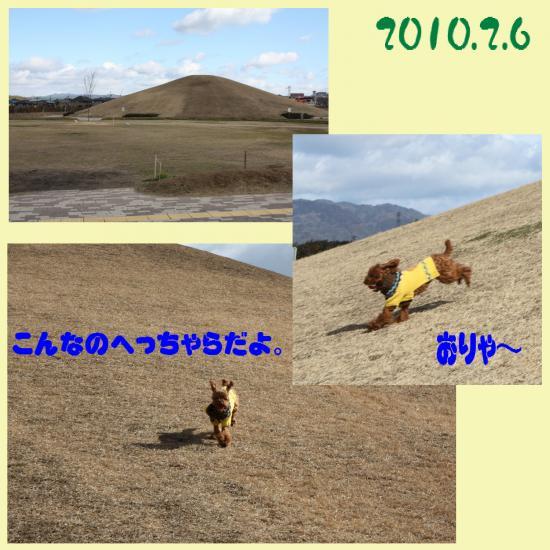 3_convert_20100210213347.jpg