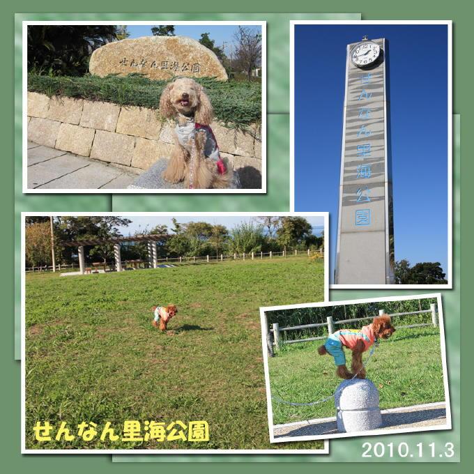40_20101111190823.jpg