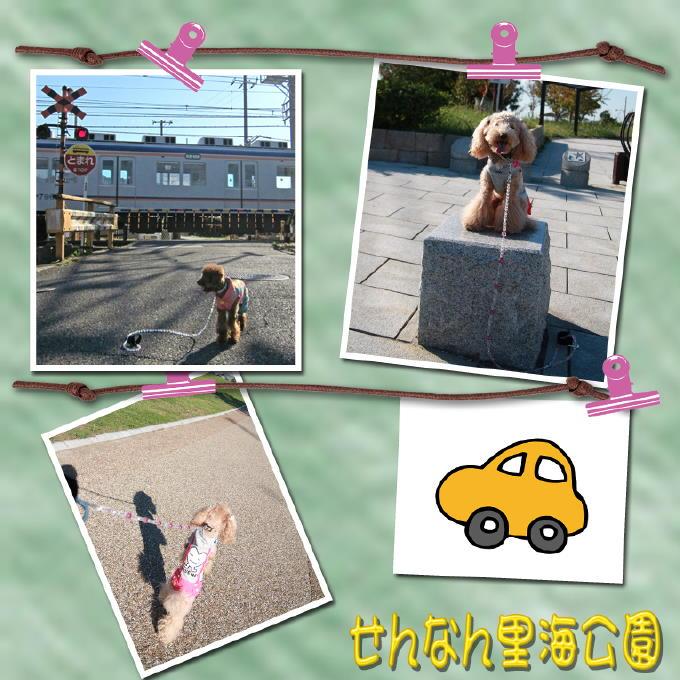 43_20101111190823.jpg